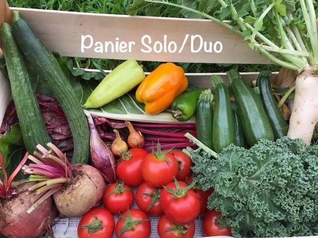 Panier solo/duo